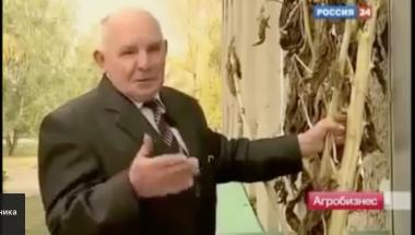 Кадр из фильма теле - канала Россия 24